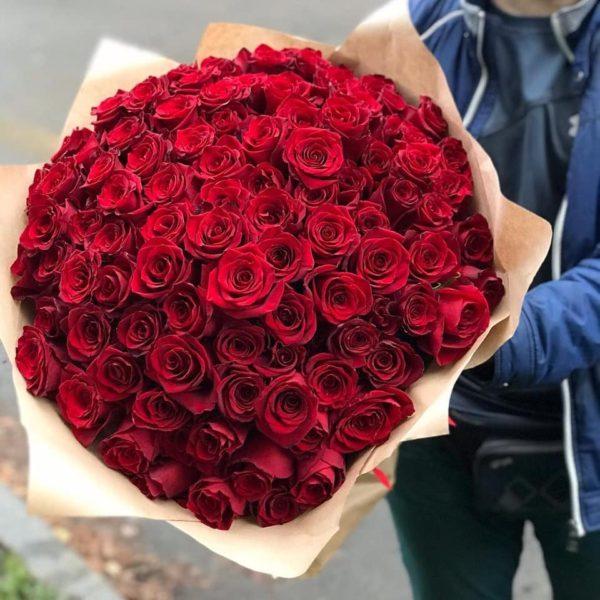 101 красные розы