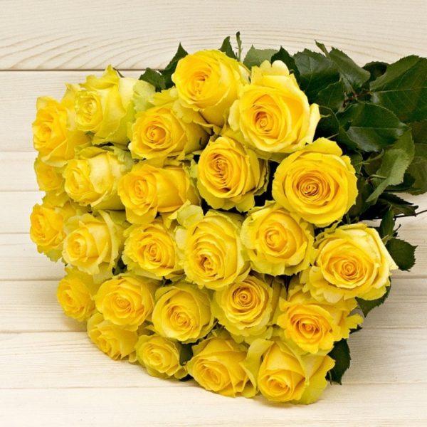 Розы Эквадор поштучно желтые